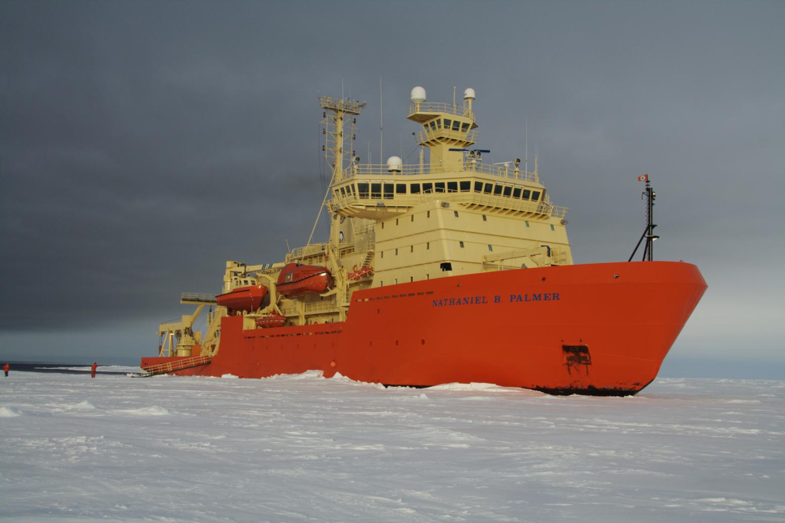 Palmer in the ice (NBP0901)