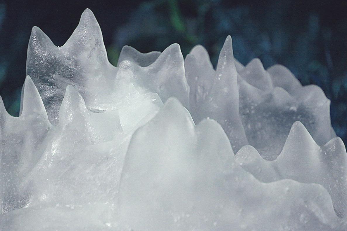 36-ce-GenevieveHoffman-ice